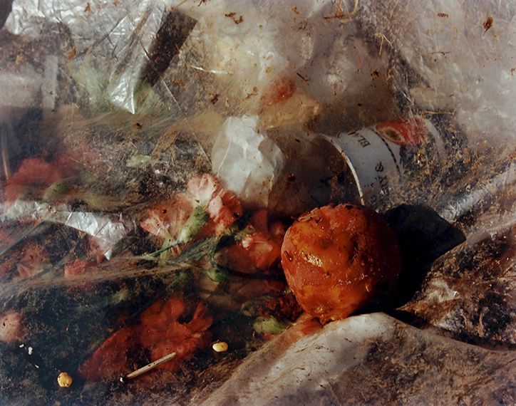 Pictures from a Rubbish Tip, 1988-89